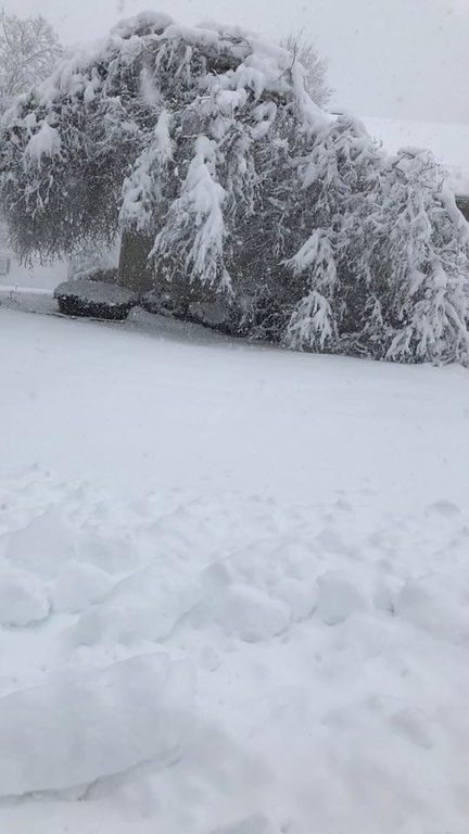 . This photo by Shawn Marsh shows part of a front yard and house in Verona on Friday, March 2, 2018.