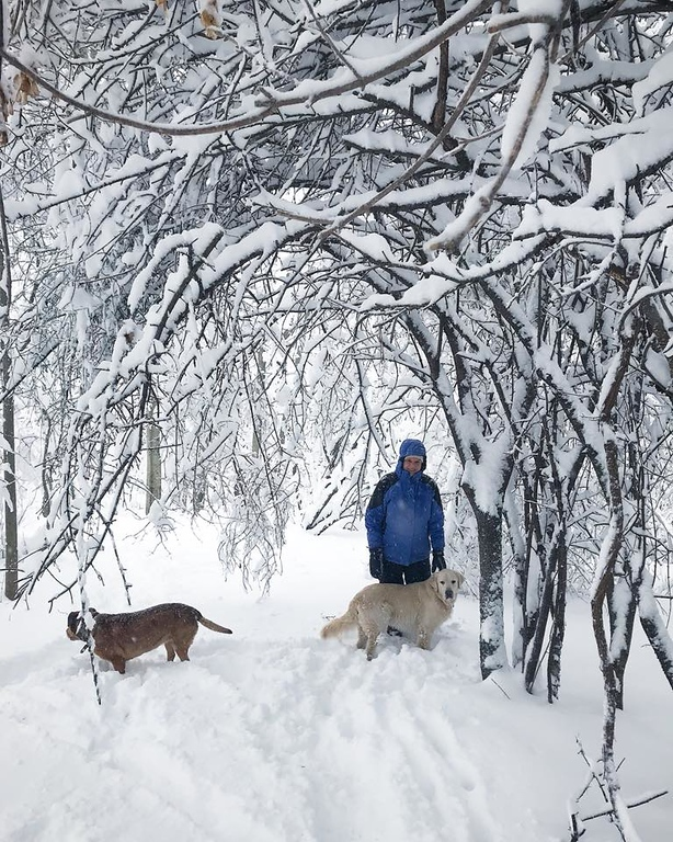 . Taking the dogs for a stroll through the snow on Friday, March 2, 2018, in this photo by Danielle Cook.