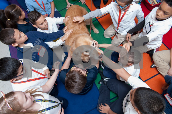 03/02/18 Wesley Bunnell | Staff Students from Ms. LIbby's third grade class at Gaffney Elementary School pet Cooper who is a trained therapy dog on Friday during Dr. Seuss Day aka Read Across America Day. Cooper is the personal dog of Principal Anita Fazio.