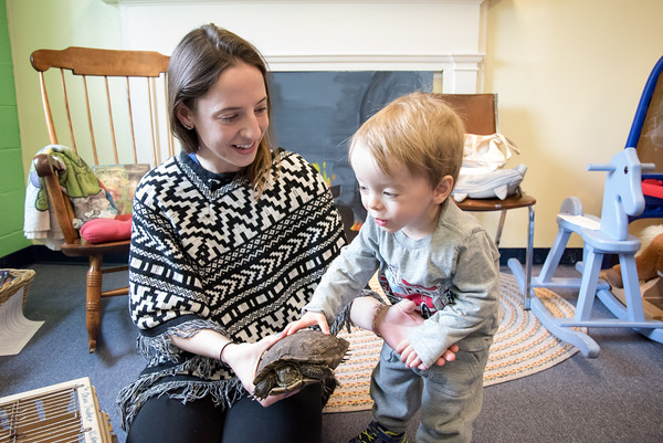 03/27/18 Wesley Bunnell | Staff Daniel Piechota, age 2, pets a Red Eared Slider Turtle named Donatello as Program Teacher Liz Watt holds him at the Children's Museum at 30 High St in New Britain on Tuesday morning. The Museum held a Meet, Greet and Read with Animals event which was free to the public.