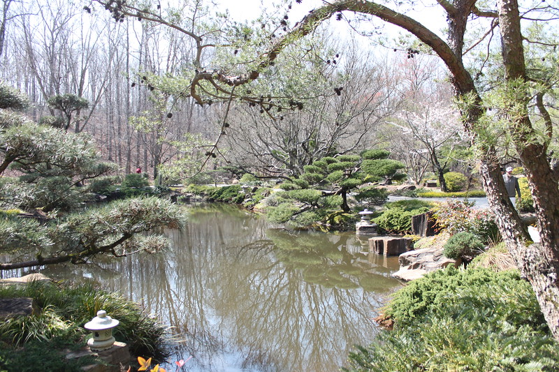Japanese style gardens with a pagoda