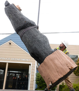 Adam Payne helps guide the Black Bear Diner bear sculpture off the truck to set it in its new location Thursday at the Paradise Police Department in Paradise. (Matt Bates -- Enterprise-Record)