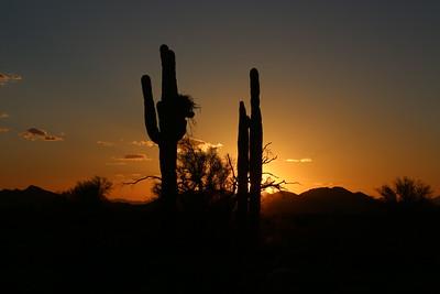 March 25 sunset Quartzsite Az
