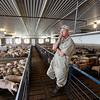 Industrial Farming Impact