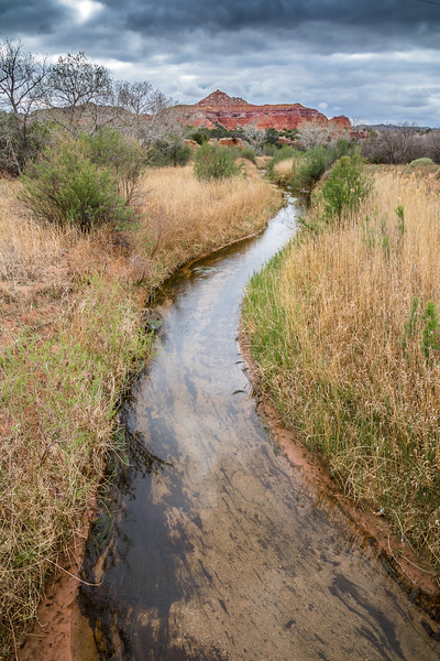 Creek towards Capitol Peak