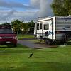 Glenlodge Caravan Park Bundaberg. Great managers. Great sites.