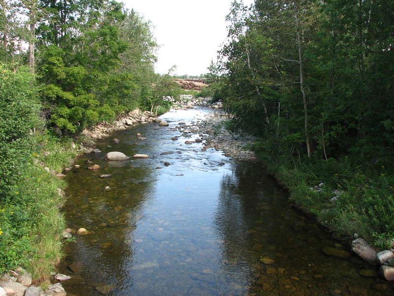 This is the view downstream from the first crossing. The sawmill operation can be seen in the distance.