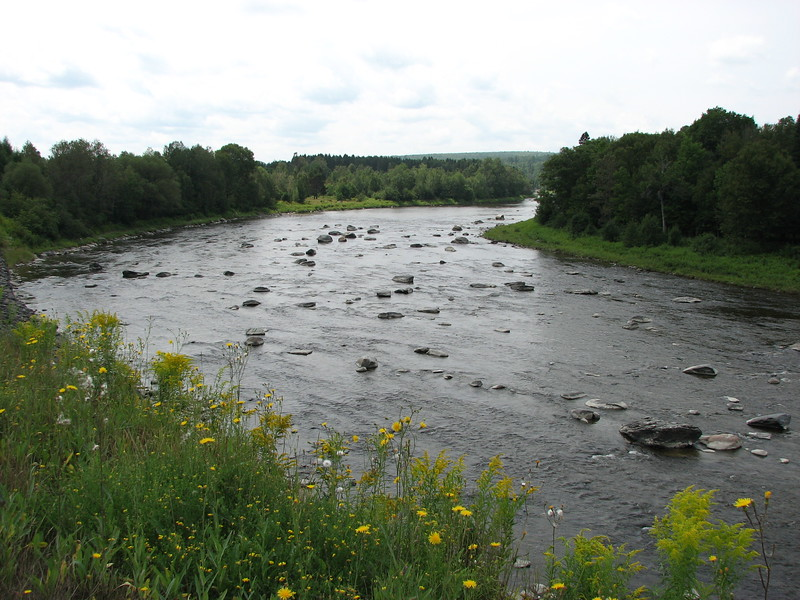 View of the river from Rt 204 about 3 km east of St. Gedeon-de-Beauce, QC, looking upstream.