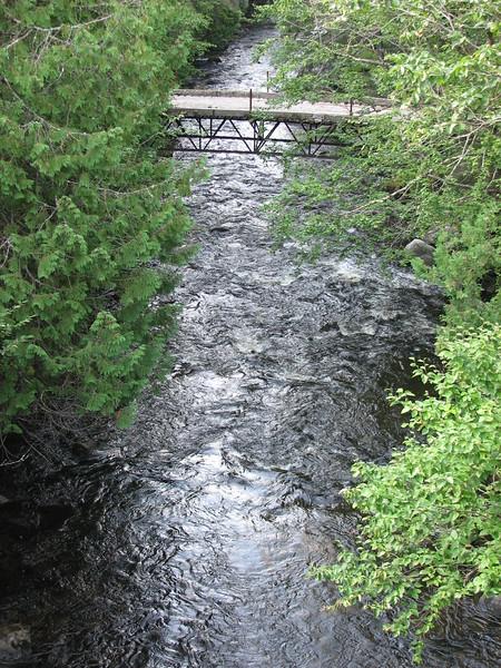 View of Spider River downstream toward Rush Lake.