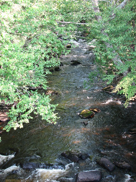 View of Spider River upstream toward Spider Lake