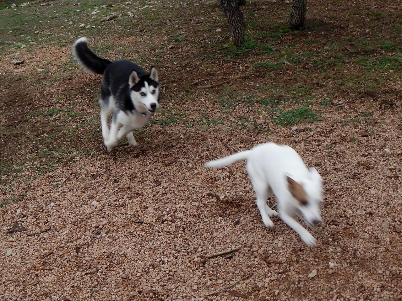 Kiki catching up to Bella A