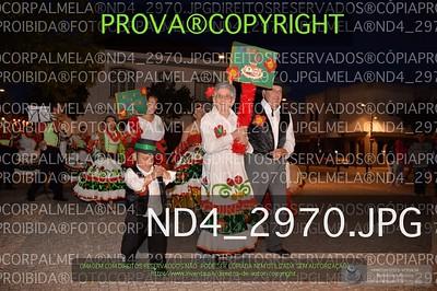 ND4_2970