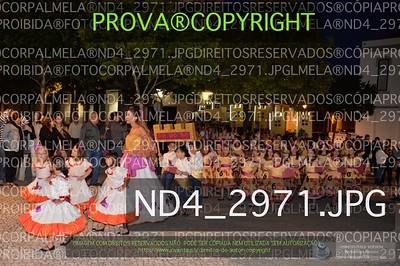 ND4_2971