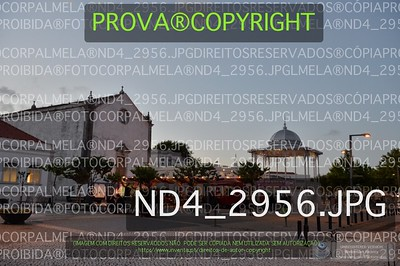 ND4_2956