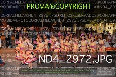 ND4_2972