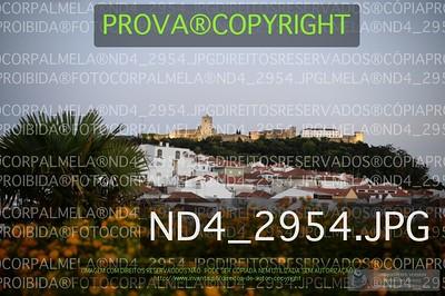 ND4_2954