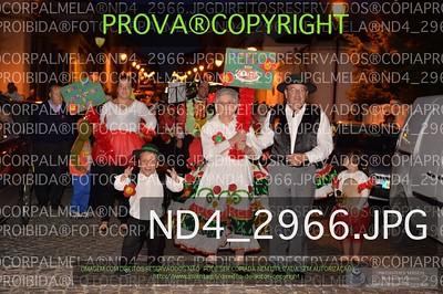ND4_2966