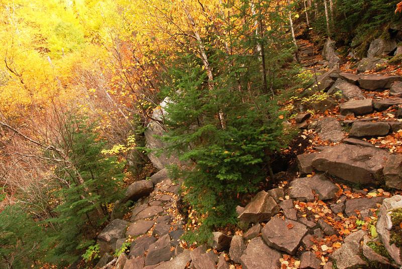 Épingle à pic sur le sentier de l'Acropole des Draveurs - Parc national des Hautes-Gorges de la rivière Malbaie Québec