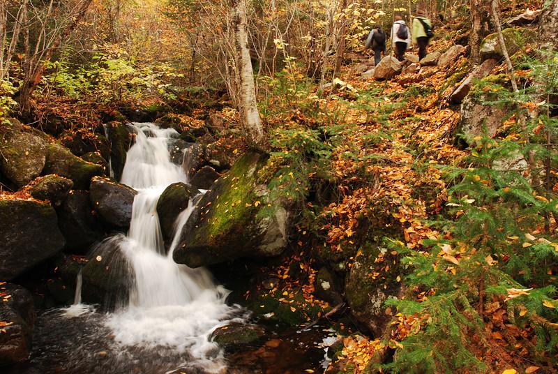 Randonneurs sur le sentier de l'Acropole des Draveurs - Parc national des Hautes-Gorges de la rivière Malbaie Québec
