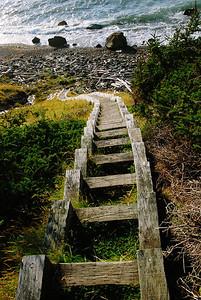 Escalier - Sentier Green Gardens, parc national de Gros Morne, Terre-Neuve