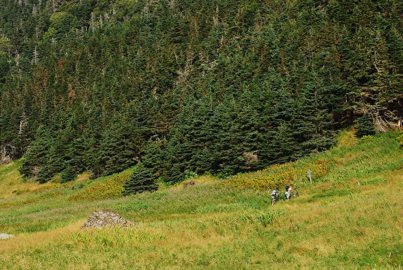 Cyclistes sur le sentier Green Gardens - Parc national de Gros Morne, Terre-Neuve