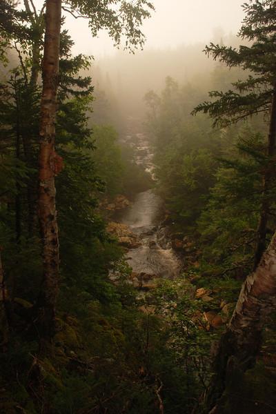 Ruisseau sur le sentier James Callaghan (mont Gros-Morne) Parc national de Gros Morne, Terre-Neuve