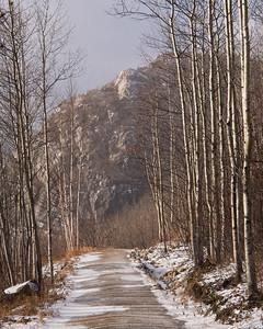 Sentier du mont du Lac des Cygnes
