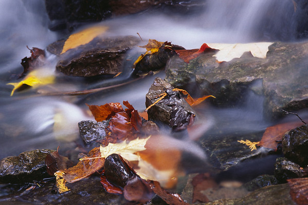 Ruisseau - Parc de la chute Kabir-Kouba, Loretteville, Québec
