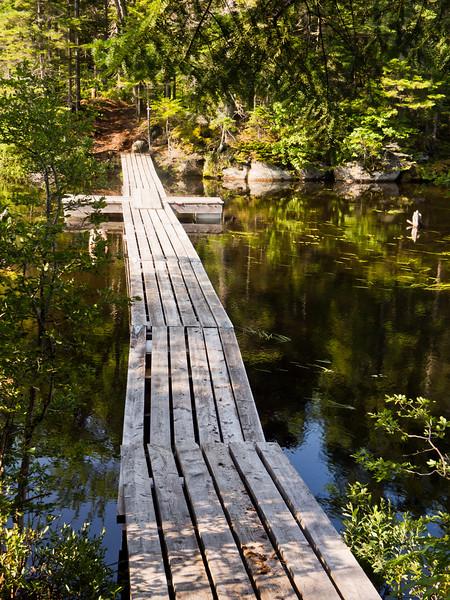 Pont flottant - Sentier Roland-Leclerc