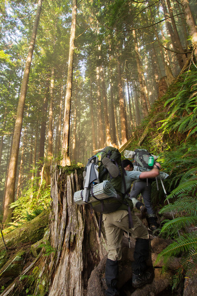 Hiker on the West Coast Trail