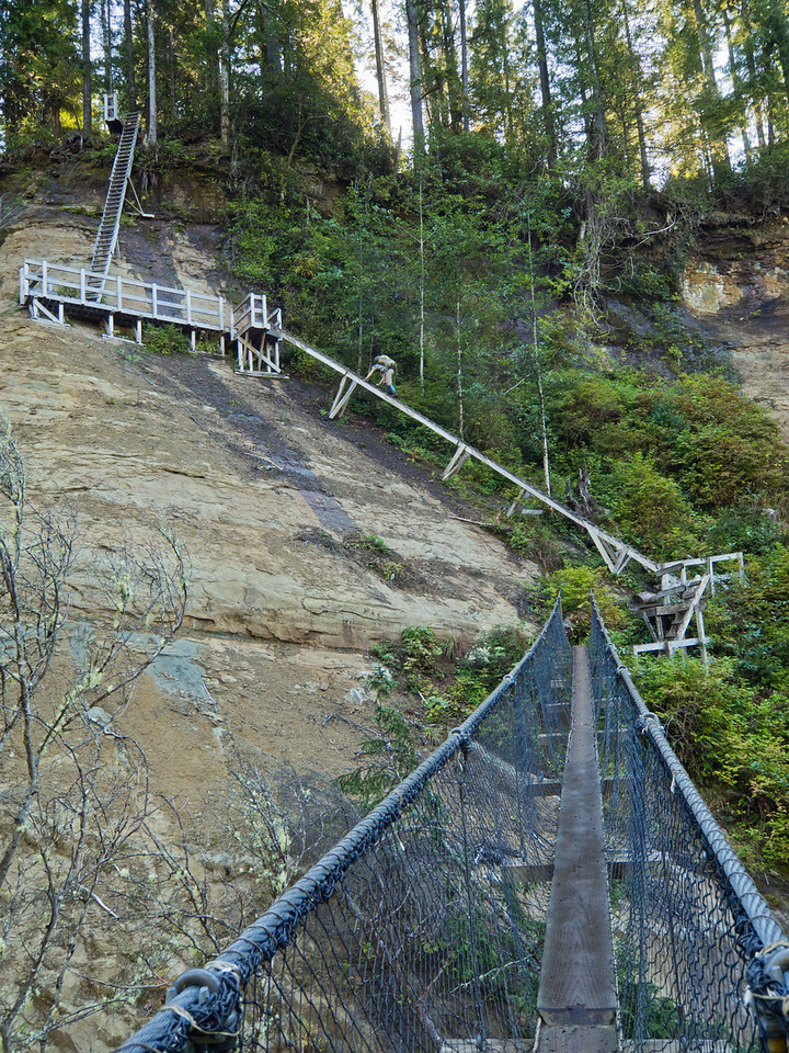 Scary bridge and ladders at Logan Creek
