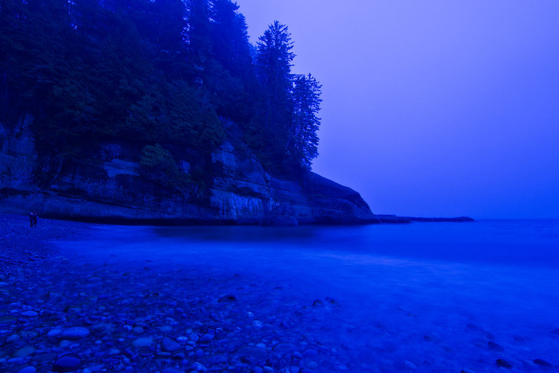 Foggy evening at Cullite Creek