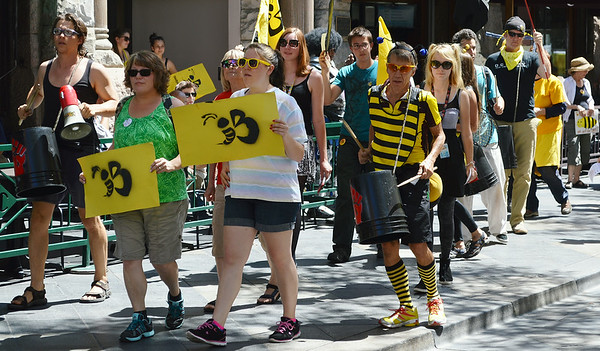 bees-protest-38