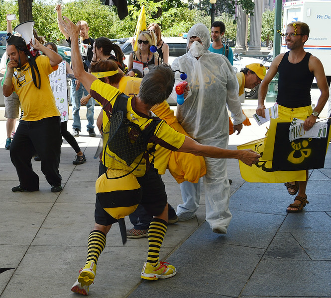 bees-protest-25