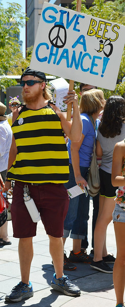 bees-protest-34