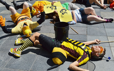 bees-protest-33