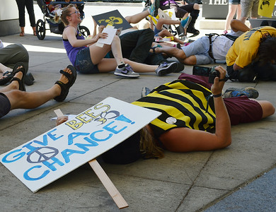 bees-protest-28