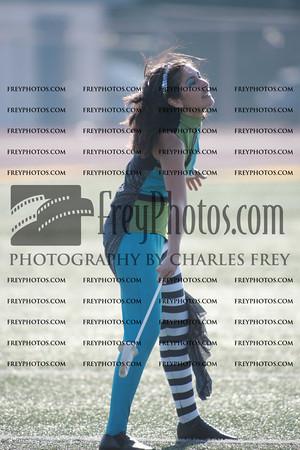 CFRY3196