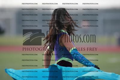 FRY22528