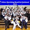 Zebra_Wayne Memorial_3