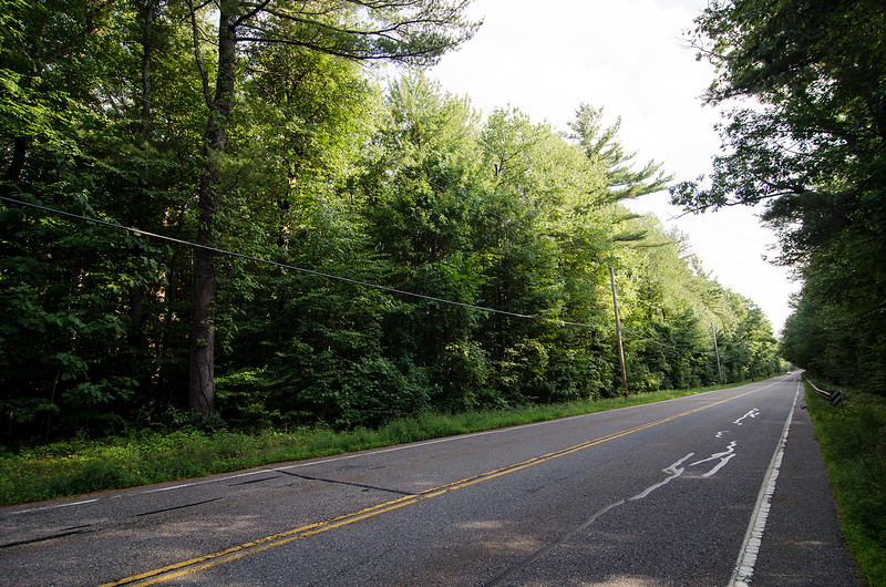 The wooded area roughly a half mile from her mother's home in Princeton where Vanessa Marcotte's body was found on Sunday evening. Worcester County DA Joe Early confirmed in a press conference on Thursday that Marcotte's killer is male, and likely would have scratches, bruises from struggle with the victim. SENTINEL & ENTERPRISE / Ashley Green