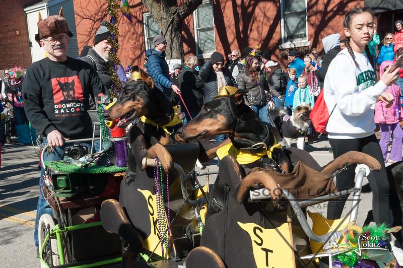 Mardi-Dog Parade 2019-11