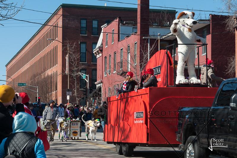 Mardi-Dog Parade 2019-5