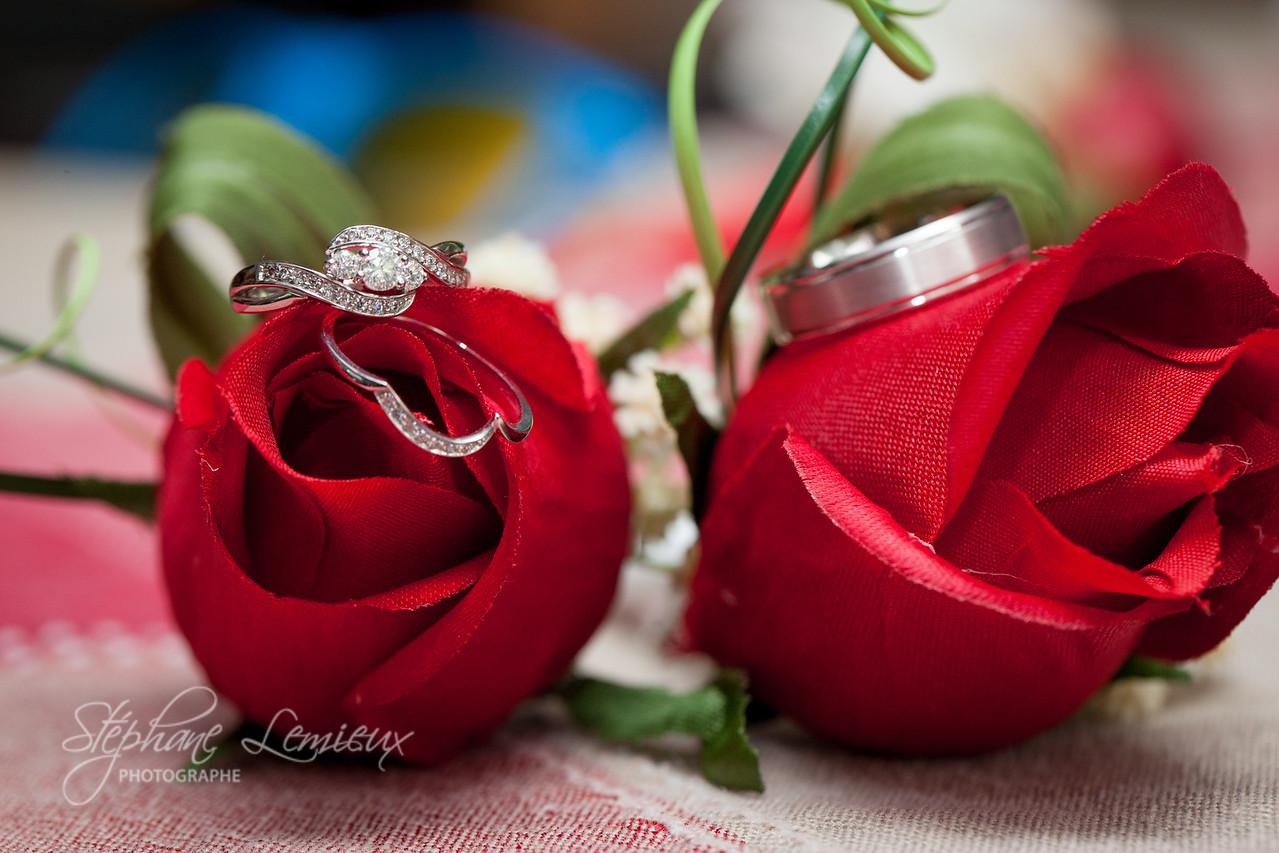 stephane-lemieux-photographe-mariage-montreal-20170603-012