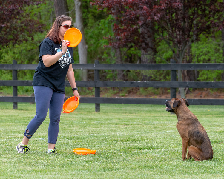 First Toss of Spring-MAD Dogs-4105