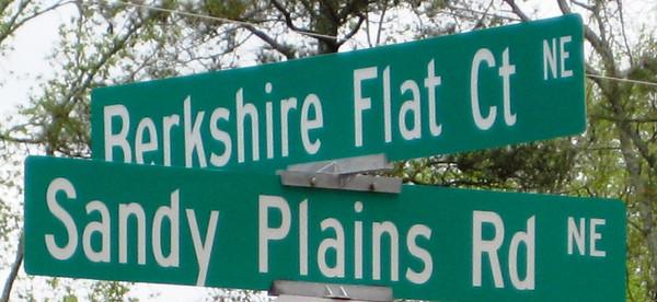 Berkshire Estates Marietta GA Neighborhood (3)