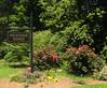 Brandon Ridge Marietta Neighborhood Of Homes (1)