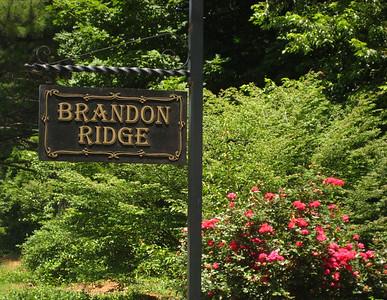 Brandon Ridge Marietta Neighborhood Of Homes (2)