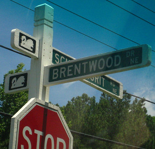 Brentwood Park-Around Marietta (3)