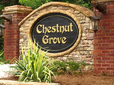 Chestnut Grove Marietta Home Neighborhood (10)